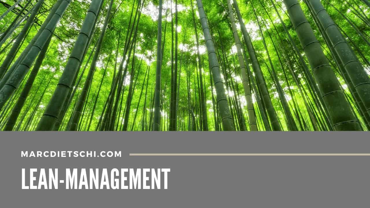 lean management - Lean-Management - Die Vermeidung von Verschwendung
